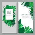 Floral leaves vector illustration invitation card. Green forest leaves herb plant and greenery mix. Natural botanical