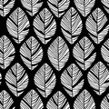 Floral linear seamless decorative pattern. Scribble background with leafs. Black and white contour fabric texture. Hand Royalty Free Stock Photo