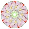 Floral Mandala