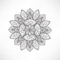 Floral mandala decor. Geometric flower isolated outline openwork