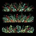 Floral ornament of flowers of beautiful shades. Pattern from leaves of different plants and berries of lingonberry or cranberry. F
