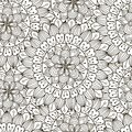 Floral ornament seamless pattern. Black and white round texture in vector