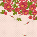 Floral ornament with wild rose on a polka dot background Stock Photo
