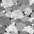 Floral pattern background with chrysanthemum vector illustration Royalty Free Stock Photography