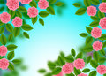 Floral Pattern with of Blooming Pink Roses on blue Blurred Bokeh Background. Wildflowers and Peonies bouquet. Vector illustration