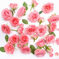 Floral Pattern Made Of Pink Ro...