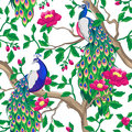 Floral pattern with peacock and pink flowers. Royalty Free Stock Photo