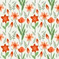 Floral pattern seamless with red flowers Royalty Free Stock Image
