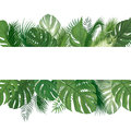 Floral pattern. Tropical Palm tree leaves background. Royalty Free Stock Photo