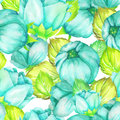 A floral pattern with the turquoise beautiful flowers painted in watercolor on a white background