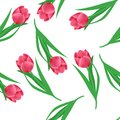 Floral pattern. Vector seamless background. Pink tulips Royalty Free Stock Photo