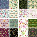 Floral patterns seamless decorative pattern collection Royalty Free Stock Image