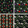 Floral patterns seamless decorative set Stock Images
