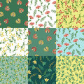 Floral patterns set Royalty Free Stock Photo