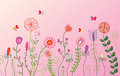 Floral pink banner Stock Photos