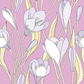 Floral seamless background gentle flower pattern crocus bouquets texture with white flowers Stock Photos