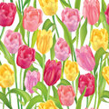 Floral seamless background gentle flower pattern flowers tulip texture with flowers vector graphic Royalty Free Stock Image