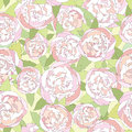 Floral seamless background gentle flower pattern peony bouquets wavy texture with apple tree flowers Stock Photography