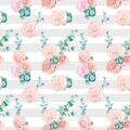 Floral seamless background with roses on a striped white and gray background and eucalyptus Royalty Free Stock Photo