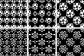 Floral seamless pattern. Black and white abstract backgrounds Royalty Free Stock Photo