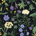 Floral seamless pattern with blooming wild flowers and meadow flowering plants on black background. Romantic floral