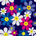 Floral seamless pattern with colorful flowers texture background Stock Image