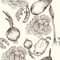 Floral seamless pattern with engraved vegetables vector Stock Photos