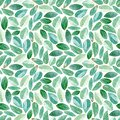 Floral seamless pattern.Eucalyptus branches. Watercolor