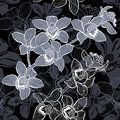 Floral seamless pattern with hand drawn orchids .Vector design. Stock Photos