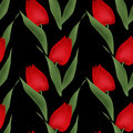 Floral seamless pattern red tulips illustration black background
