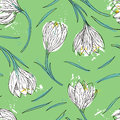 Floral seamless pattern with snowdrops