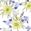 Floral seamless pattern with watercolor iris, daylily