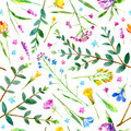 Floral seamless pattern of a wild flowers and eucalyptus on a white background.
