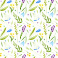 Floral seamless pattern of a wild flowers and herbs on a white background.
