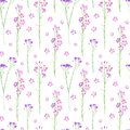Floral seamless pattern of a wild flowers on a white background.