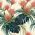 Floral seamless vector tropical pattern, spring summer background with exotic protea flowers, palm leaves.