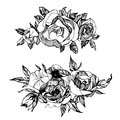 Floral set, of hand drawn flowers, roses, peones Boho chic style for invitation, t-shirts