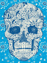 Floral skull Royalty Free Stock Photo