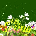 Floral spring background with text letter ornament beautiful calligraphy flower poster vector illustration. Royalty Free Stock Photo