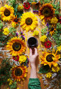 Floral summer background. A mug of coffee in a woman`s hand on a wooden background with sunflowers and wildflowers Royalty Free Stock Photo