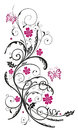 Floral tendril flowers pink in and black with butterflies Stock Images