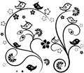 Floral tracery with birds any colour background Stock Photography