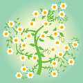 Floral tree illustration with a beautiful Royalty Free Stock Images