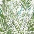 Floral tropical vector pattern with green palm plants and leafs Royalty Free Stock Photo