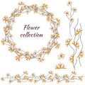 Floral tropical wreath, set of yellow thorny tropical flowers isolated on white background Royalty Free Stock Photo