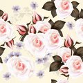 Floral vector seamless  pattern with roses  flowers Stock Images