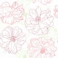 Floral wallpaper with poppy flowers Stock Image