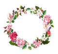 Floral wreath with apple, cherry flowers, sakura blossom, roses flowers and feathers. Watercolor round border Royalty Free Stock Photo