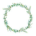 Floral wreath.Garland of a eucalyptus branches.Frame of a herbs.