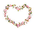 Floral wreath - heart shape. Pink flowers, boho feathers. Watercolor for Valentine day, wedding Royalty Free Stock Photo